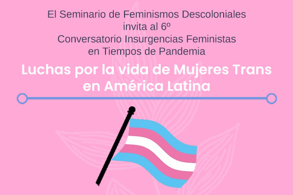 banner Luchas mujeres trans